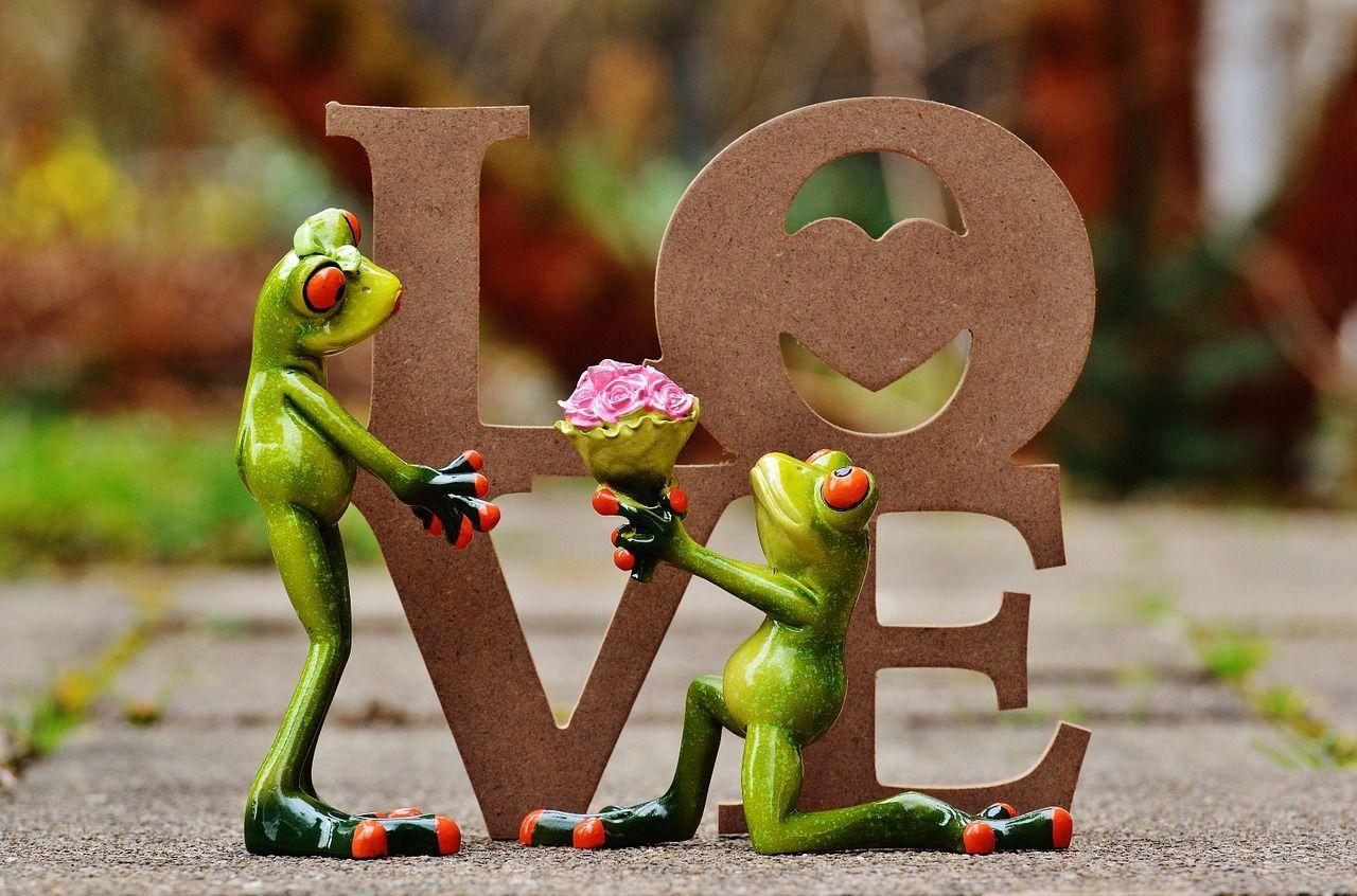 El amor tiene muchas formas