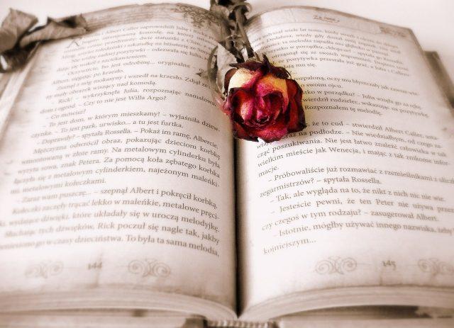 Libro abierto con una rosa encima.