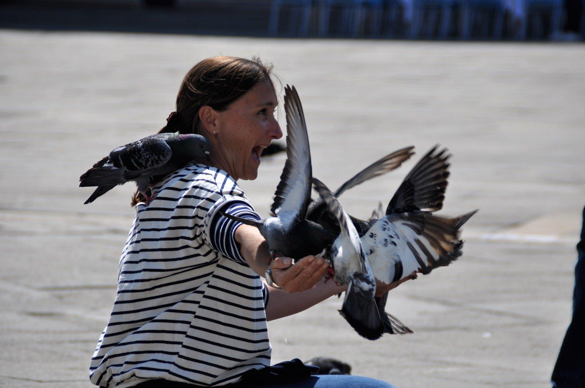 Mujer asustada rodeada de palomas.
